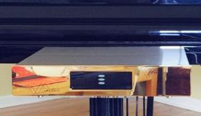 极佳瞬态响应 美国Merrill Audio新Jens唱头放大器