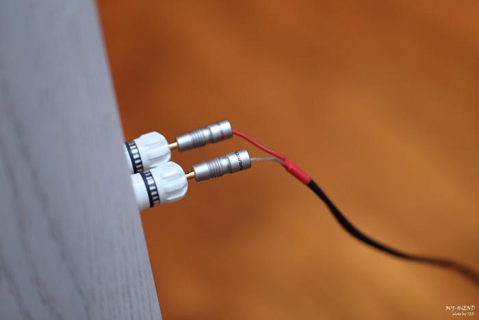 奈米技术的原点 NANOTEC SP#79 SPECIAL入门喇叭线