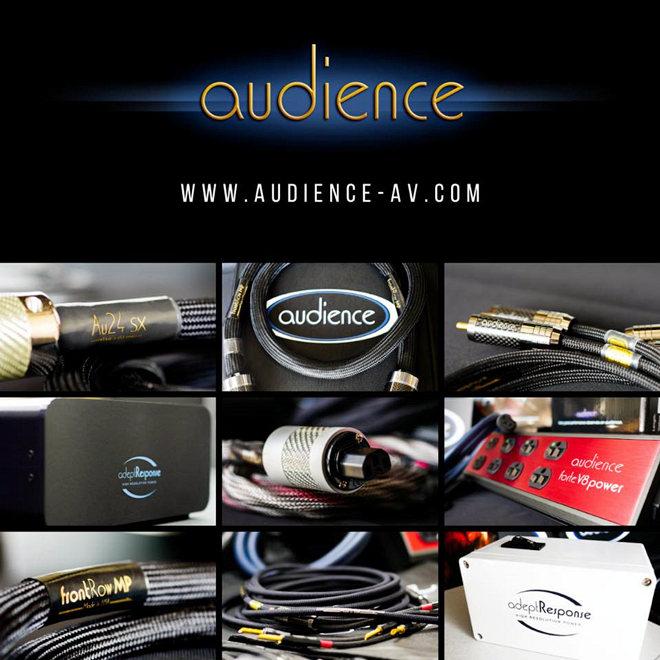 接頭質量升級: 美國Audience Au24 SE特別版喇叭線